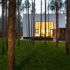 CUBE: A House Located in a Pine Forest in Kiev