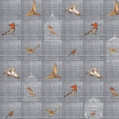 Bird cages wallpaper collection by Chapman collections Bird Wallpaper, Bird Cages, Birds, Rugs, Collection, Home Decor, Farmhouse Rugs, Decoration Home, Room Decor