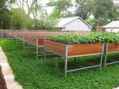 Steel Planters   Austin Outdoor Studio for veggies on the roof. http://www.austinoutdoorstudio.com/custom-work/steel-planters/