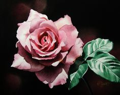 Dark Pink Rose -- Jacqueline Gnott (watercolor)