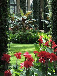 The Ultimate Revelation Of Tropical Landscaping 62 - tropical garden ideas Bali Garden, Balinese Garden, Dream Garden, Tropical Backyard Landscaping, Tropical Garden Design, Landscaping Ideas, Luxury Landscaping, Landscaping Company, Tropical Style