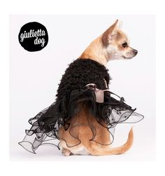 Happy Black dress dog plush curly   Abito Happy Black per cani in peluche ricciolino. More on http://www.chic4dog.com/abitini/abito-happy-black-1198.html