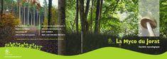 #Philippidis #Mycologie #Champignons #Nature #Web_design #Graphisme #Print #Design #Visuels #Cover #Books #CoversBooksDesign #Visual #Flyers #Graphik #Pilze Web Design, Print Design, Flyers, Cover, Nature, Books, Graphic Design, Mushrooms, Design Web