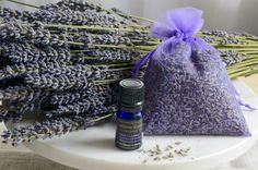 "We smell amazing! At the farm we are transitioning to the ""peak of fragrance"" when essential oil reaches its full production in each little lavender bud and the fields are most fragrant. You can smell amazing too with our Organic Lavender Sachet and Organic Lavender Essential Oil combo produced directly from the bountiful fields. Lavender Buds, Lavender Sachets, Lavender Essential Oil Uses, Essential Oils, Bites And Stings, Room Freshener, Organic Oil, Natural Oils, Fields"