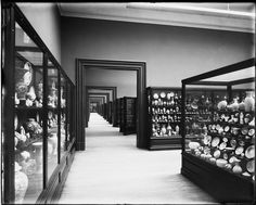 The Chinese porcelain collection in 1907