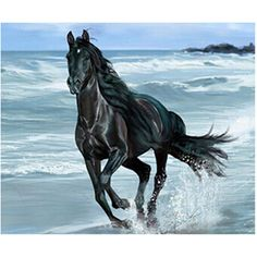 drill rhinestone cross stitch Round diamond embroidery mosaic  Home Decor wall art pictures Black Horse 3D Diy diamond painting #>=#>=#>=#>=#> Click on the pin to check out discount price, color, size, shipping, etc. Save and like it!