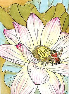 In Full Bloom - A Creative Haven Coloring Book from Dover Publications, NEW PB