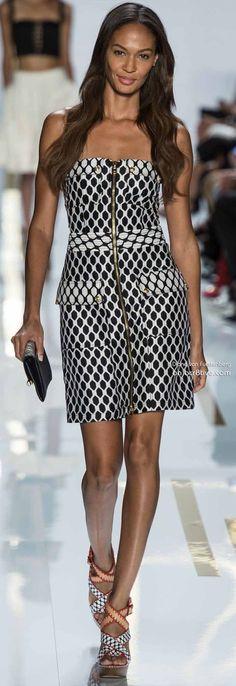 Diane Von Furstenberg Spring 2014 Ready to wear collection