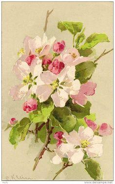 catherine klein artist - spring blossoms