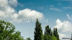 Stock Footage of Time-lapse of soft clouds above the countyside in Switzerland. Explore similar videos at Adobe Stock Royalty Free Video, Time Lapse Photography, Stock Video, Stock Footage, Switzerland, Clouds, Videos, Cloud