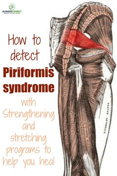 A great site dedicated to the piriformis. Another Pinner posted: How to detect piriformis syndrome and a specific strengthening and stretching program to help you return to healthy training mobility exercises physical therapy Sciatica Stretches, Sciatic Pain, Piriformis Exercises, Scoliosis Exercises, Sciatica Relief, Hip Stretches, Sciatic Nerve Injury, Hip Pain Relief, Shoulder Stretches
