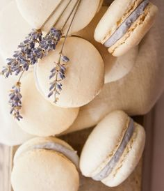 Honey Lavender Macarons ~ Recipe From Hint of Vanilla