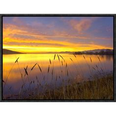 Global Gallery Sunrise At San Luis Reservoir San Joaquin Valley California By Tim Fitzharris
