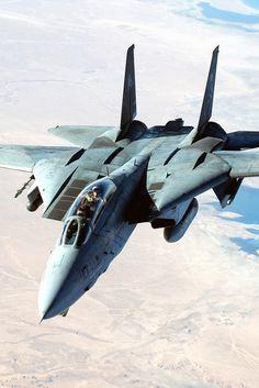 aerophotography:  F-14 Tomcat.