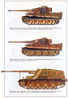 More German Armour in Italy (Tiger 1E heavy tanks  Nashorn-Hornisse tank destroyer)