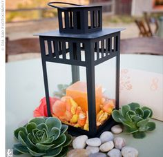 centerpieces using lanterns | Center of Attention : wedding decor phoenix Lantern