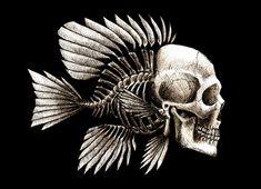 Fish Skull Design by *beanarts