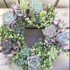 """Amazing wreath @limpopo_v_v_  Those variegated string of pearls are just…"