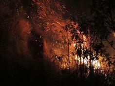 FOTOS de ayer por Daniel Di Giosia, miembro GRV - parte del incendio