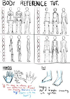 How to draw body proportions NOT MINE: Drawn by one of our Members Drawing Body Proportions, Drawing Body Poses, Body Reference Drawing, Human Figure Drawing, Figure Sketching, Art Reference Poses, Proportion Art, Human Body Drawing, Cartoon Body