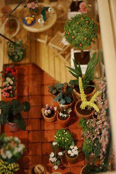 garden1 by goldieholl, via Flickr