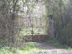 também gosto de portas e portões - se forem velhos, tanto melhor - se abrirem caminho à aventura, perfeito
