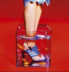 il rosso di sfondo i pesci e il quadrato di vetro fanno esaltare la scarpe che sono racchiuse in due quadrati e portano l'occhio immediatamente sul prodotto da vendere.