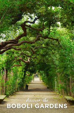 Who's up for a stroll through the whimsical Boboli Gardens?