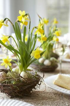 LOVE this spring arrangement of daffodils & speckled eggs in a birds nest! Would look lovely on an Easter table. Easter Flower Arrangements, Easter Flowers, Spring Flowers, Easter Centerpiece, Table Centerpieces, Flower Centerpieces, Easter Decor, Easter Colors, Table Arrangements