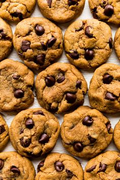 These CHEWY pumpkin chocolate chip cookies are a must try this fall! Recipe on s… These CHEWY pumpkin chocolate chip cookies are a must try this fall! Recipe on sallysbakingaddic… Pumpkin Chocolate Chip Cookies, Chocolate Cookie Recipes, Coffee Cookies, Chocolate Biscuits, Oatmeal Cookies, Gluten Free Pumpkin, Pumpkin Recipes, Pumkin Cookies Recipes, Cokies Recipes