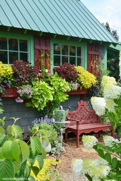 Summer Blooms Around The Potting Shed | homeiswheretheboatis.net #garden #flowers #pottingshed #summer