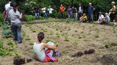 """Orti della biodiversità in Val Codera :-)  Il progetto """"Orti delle Biodiversità alpine"""" ha preso avvio ad aprile 2015 a Codera (SO) attraverso un partenariato composto da: - Associazione Amici della Val Codera - Raetia Biodiversà Alpine; - Scuola Ambulante di Agricoltura Sostenibile"""