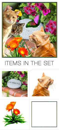 """""""Cats in the Garden"""" by reluna ❤ liked on Polyvore featuring art"""