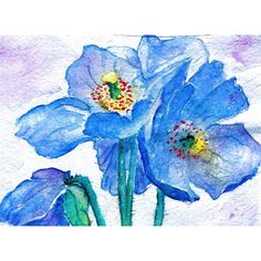 DIGITAL DOWNLOAD Flower Painting Watercolor Print Himalayan Blue... ($15) ❤ liked on Polyvore featuring home, home decor, wall art, watercolor flower painting, photo wall art, watercolor painting, red poppy painting and flower wall art