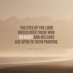 """1 Peter 3:12 ESV; For the eyes of the Lord are on the righteous, and his ears are open to their prayer. But the face of the Lord is against those who do evil."""""""
