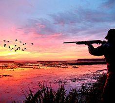 Beautiful morning duck hunt. #Sunrise #Hunting #Waterfowl