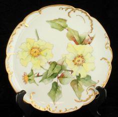 Antique Rare 8 Pc HP Haviland Limoges Cabinet Plate Set Individual Flowers | eBay