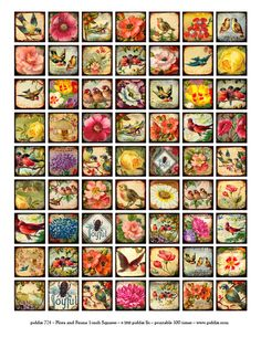 This Flora & Fauna digital collage sheet was created from high quality scans of flowers and birds from dozens of different Victorian-era postcards, handwriting from the 1700s, and images from a Parisi