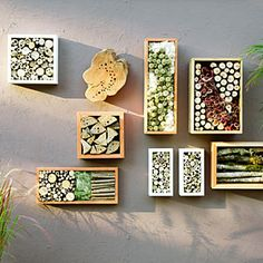 8 Stylish Bug Boxes You call it garden art insects will call it home. These chic bug hotels will offer shelter and even food for beetles bees and spiders The post 8 Stylish Bug Boxes appeared first on Garden Easy. Garden Crafts, Garden Projects, Garden Art, Bug Hotel, Garden Pests, Garden Tools, Mason Bees, Bee House, Deco Nature