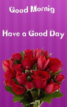 Good Morning Images Download Hd Good Morning Pic Hd, Rainy Good Morning, Very Good Morning Images, Good Morning Photos Download, Good Morning Beautiful Pictures, Good Morning Roses, Good Morning Images Flowers, Good Morning Image Quotes, Good Morning My Friend