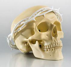 Skull Creations of Jiri Geller: http://skullappreciationsociety.com/skull-creations-of-jiri-geller/ via @Skull_Society