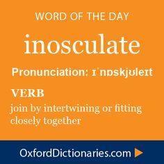 Word of the Day: inosculate Click through to the full definition, audio pronunciation, and example sentences: http://www.oxforddictionaries.com/definition/english/inosculate #wordoftheday  #WOTD