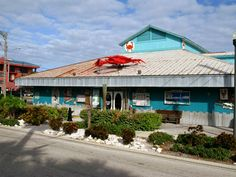 Image detail for -Crabby Bills Breakfast - Indian Rocks Beach - Florida Beach Vacation