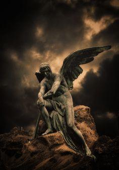 Male angel