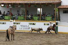 Pride of our Nation, Charreria, Mexican Sport, enjoy at Hacienda Labor de Rivera www.haciendalalab...
