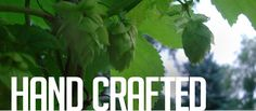 Hop Farm Brewing Co. - Bulter Street - Beer and Food! Will there be another Hoptoberfest??