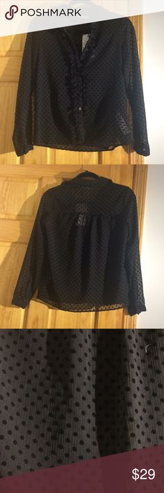 NWT zara button up blouse NWT gorgeous Zara blouse. Sheer top with velvet dots and subtle ruffles lining the buttons. Wear open or buttoned up Zara Tops Button Down Shirts