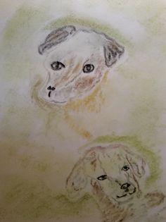 Hund und Hund