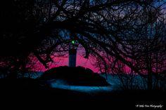 Morning Light by Mike Finn ~© Mike Finn Photography~ on 500px