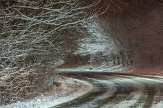 pittsburgh, pittsburgh snow, snow in pittsburgh, winter, pittsburgh winter, winter in pittsburgh, north shore, mt. washington, downtown, downtown pittsburgh, snowy pittsburgh skyline, pittsburgh skyline, dave dicello, steel city, pittsburgh views, pittsburgh winter photos, greenfield, downtown pittsburgh, mt. washington, point of view, schenley park, winter in pittsburgh, pittsburgh in the snow (8)  DaveDiCello.com